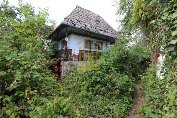 Casă/Vilă de vanzare   zona Calea Dumbravii   1000 mp teren