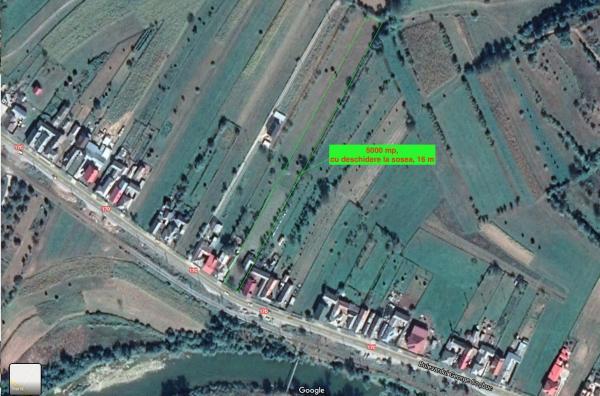 Vânzare Teren Salva, Bistrita-Nasaud, 50 ari