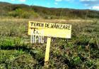 BLACK FRIDAY | Teren Intravilan | 1000 mp | Sura Mare | Zona de Case